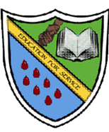 John Merlini Secondary