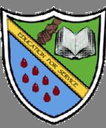 John Merlini Secondary